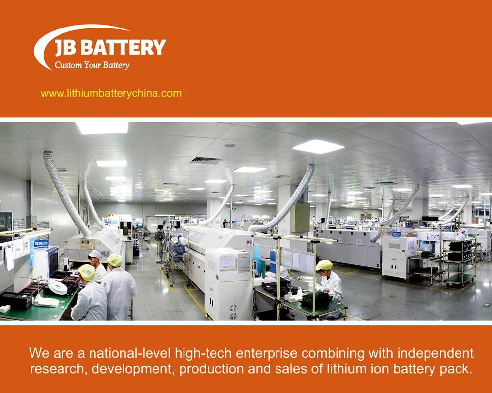 Batteria agli ioni di litio personalizzata 20