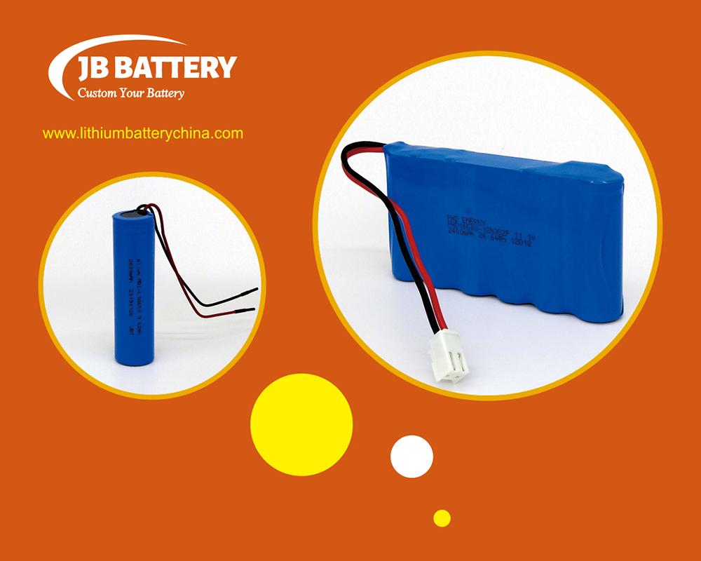Batteria agli ioni di litio personalizzata 15
